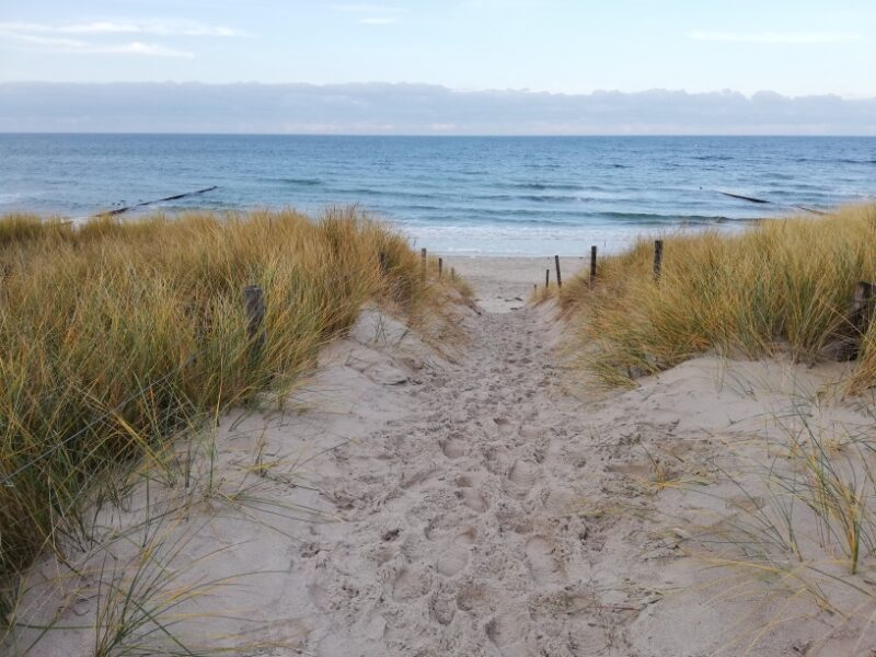 Düne zum Strand bei Graal-Müritz